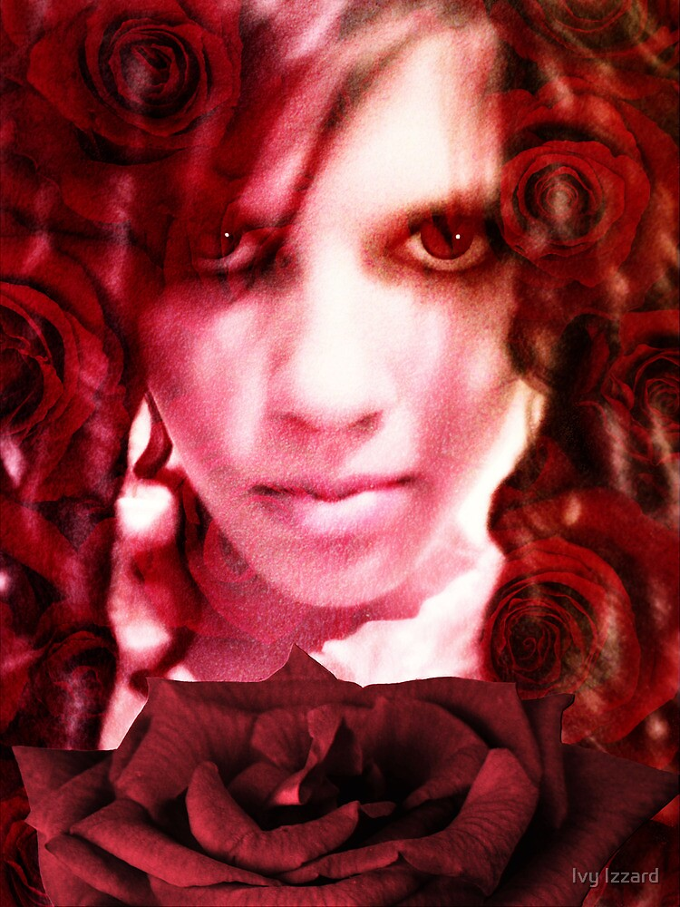 Rose II by Ivy Izzard