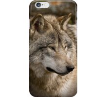 Directional View iPhone Case/Skin