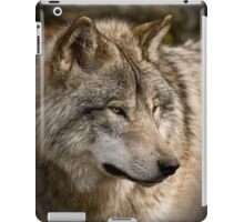 Directional View iPad Case/Skin