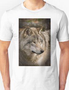 Directional View T-Shirt