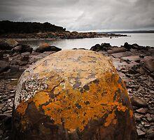 stony point - north-west tasmania. by col hellmuth