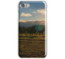 Sunset Ride iPhone Case/Skin