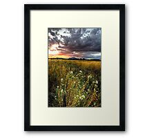Sunset Johnson the Picture Framed Print