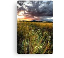 Sunset Johnson the Picture Canvas Print