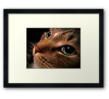 Thoughtful Eyes Framed Print