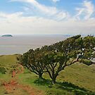 Brean Down, Steep Holm & Flat Holm by RedHillDigital