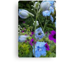 Flower Bed Buds & Blossoms Canvas Print