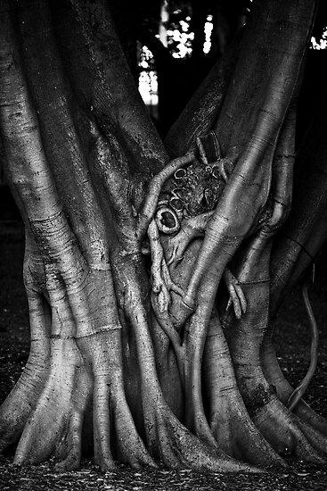 Strangulation by Crispin  Gardner IPA
