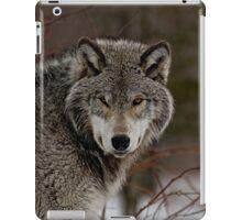 Eye Contact  -  Parc Omega, Montebello PQ iPad Case/Skin
