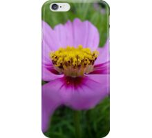 Tuesday Cosmos in Purple & PInk iPhone Case/Skin