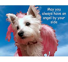 May an angel always be by your side Photographic Print