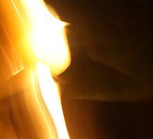 037 - Light  by Tara Bateman