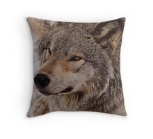 What Big eyes you have Grandma!!  - Timberwolf  Throw Pillow