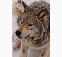 What Big eyes you have Grandma!!  - Timberwolf  Unisex T-Shirt