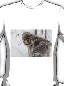Timberwolves -  Montebello, PQ T-Shirt