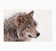 Timberwolves - Parc Omega, Montebello, PQ T-Shirt