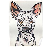 Dog Art #28: Weisswurst the Chihuahua Poodle Poster
