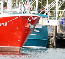 Ulladulla Harbour Boats by Sharon Robertson