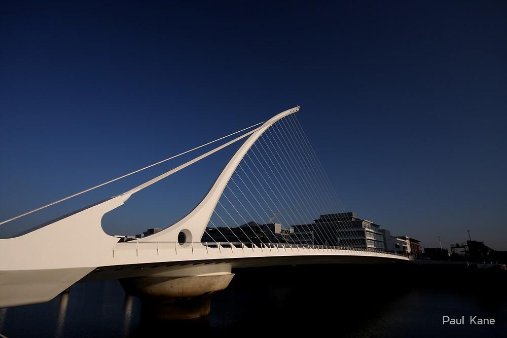 Samuel Beckett Bridge by Paul  Kane