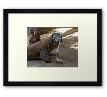 I have a long tongue! Framed Print