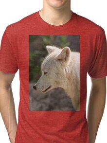A Momentary Pause Tri-blend T-Shirt