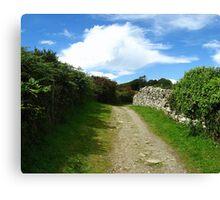 Irish Carriage Path Canvas Print