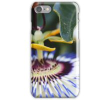 Passionflower (passiflora) from my neighborhood iPhone Case/Skin