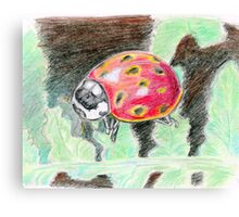 A Ladybug Canvas Print