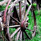 Wheel in Time! by Gabrielle  Lees