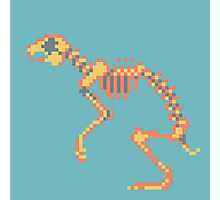 Rabbit Pixel Skeleton Photographic Print