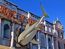 Shark Attack - Amity Hotel - Thorpe Park by Colin J Williams Photography