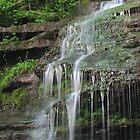 Pennsylvania Grand Canyon Waterfalls by Jcook