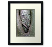 Nature's Womb Framed Print