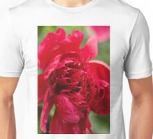 Into the Red! Unisex T-Shirt