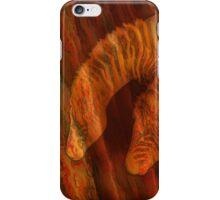 Moods Of Africa - Zebras iPhone Case/Skin