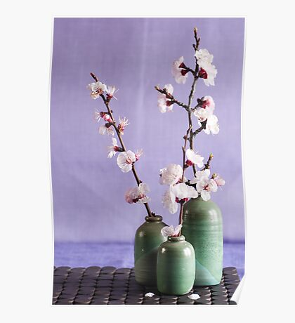 Blossoms and vases Poster