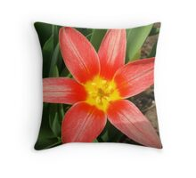 Pow Tulip Throw Pillow