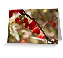 stem berry Greeting Card