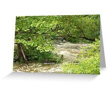 Unami Creek - Green Lane - Pennsylvania - USA Greeting Card