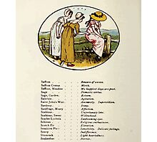 Language of Flowers Kate Greenaway 1884 0042 Descriptions of Specific Flower Significations Photographic Print