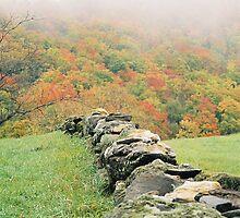 Historic Stone Wall by Jesse Wheadon