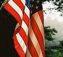 Flag Day by Jesse Wheadon