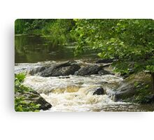 Unami Creek at Trinity Bridge #1 Canvas Print