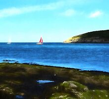 Red Sails By Puffin Island by JohnYoung