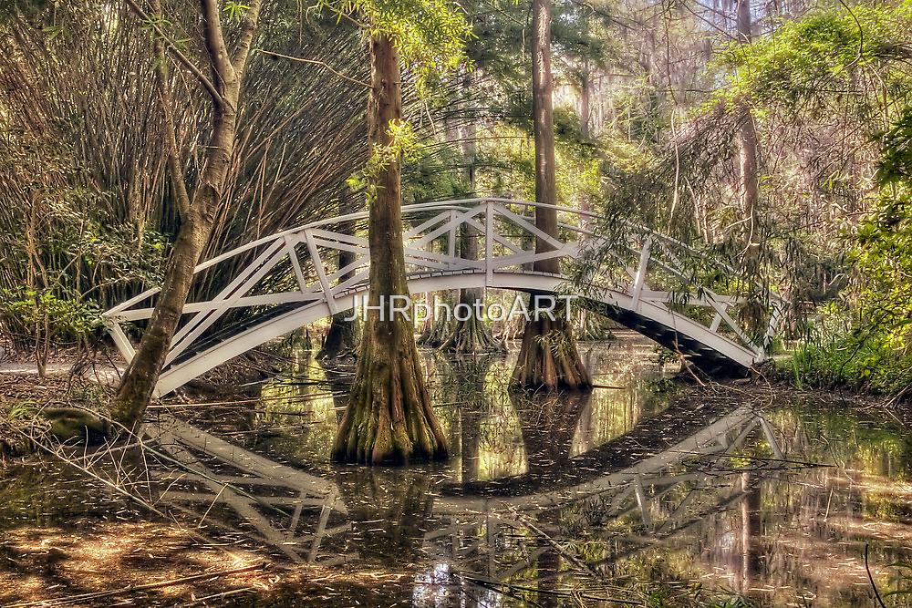 Cypress Swamp - Magnolia Plantation and Gardens by JHRphotoART