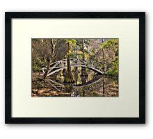 Cypress Swamp - Magnolia Plantation and Gardens Framed Print