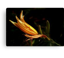 SLIM YELLOW Canvas Print