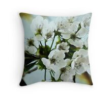 ~ Cherry Blossoms ~ Throw Pillow