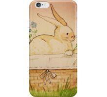 Spring Bunny Basket iPhone Case/Skin