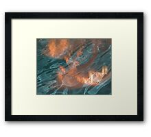 Fire & Water Framed Print